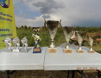 Wyniki maratonu  1-2.07.17